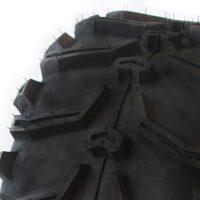Black Tyre - Bear.jpg