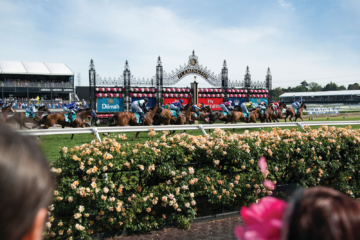 Melbourne Cup – Did you know?